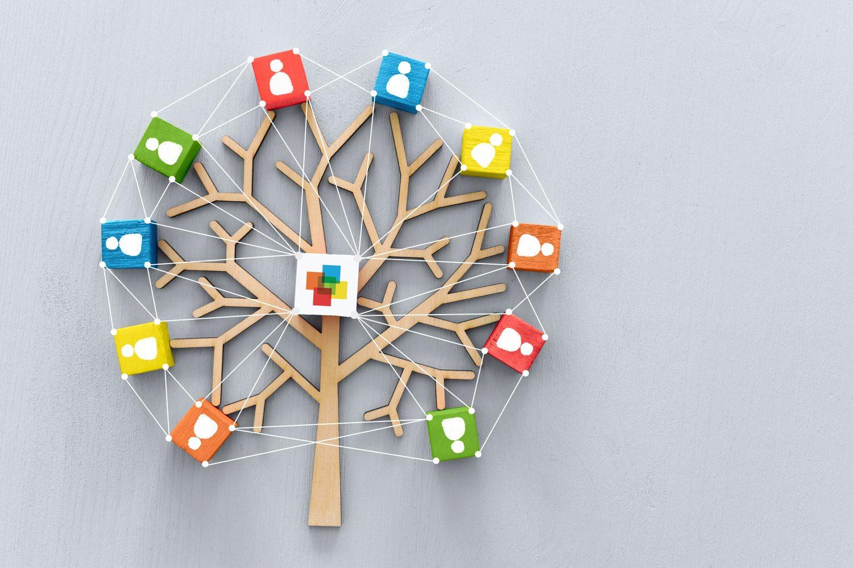 Bild zeigt: Miteinander vernetzte farbige Würfel als Symbol für die verschiedenen Fachdienste
